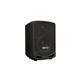 Amplificador portatil Mark MAM-45.